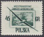 Międzynarodowe Zawody Szybowcowe - 712