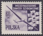 Międzynarodowe Zawody Szybowcowe - 713A