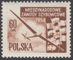 Międzynarodowe Zawody Szybowcowe - 713B