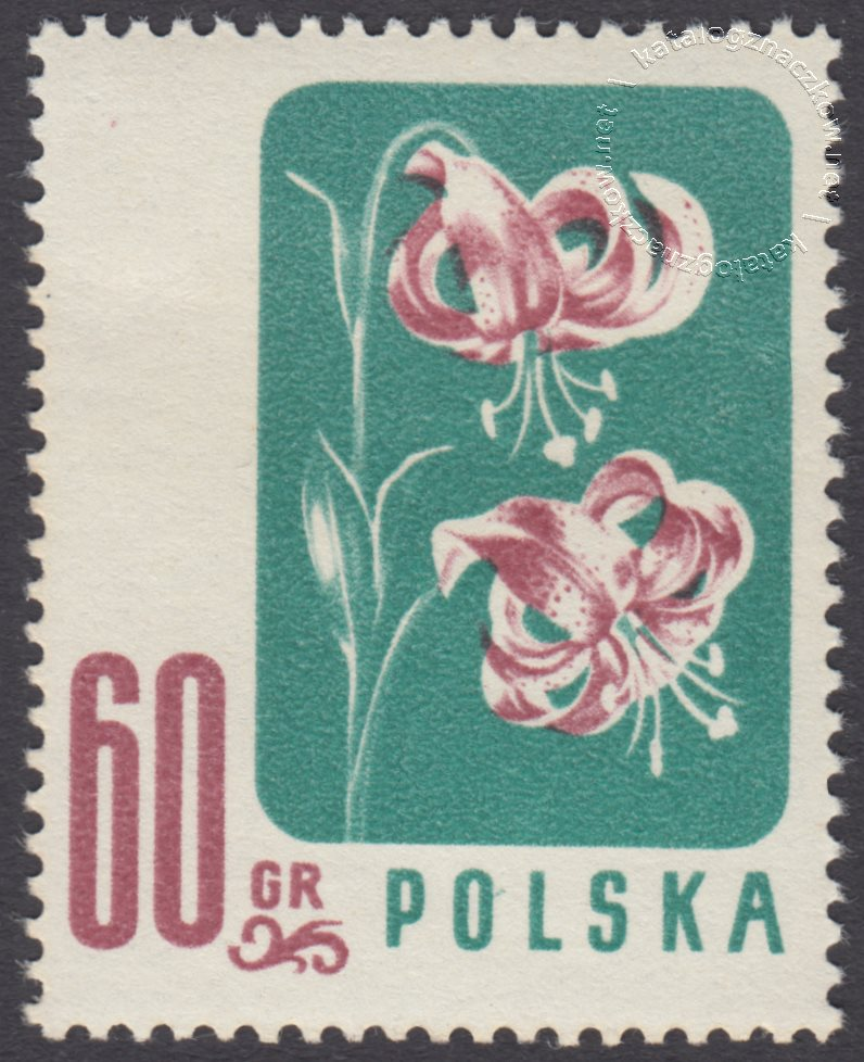 Kwiaty chronione znaczek nr 876