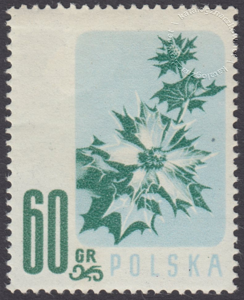 Kwiaty chronione znaczek nr 877