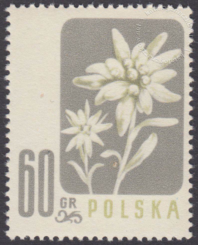 Kwiaty chronione znaczek nr 878