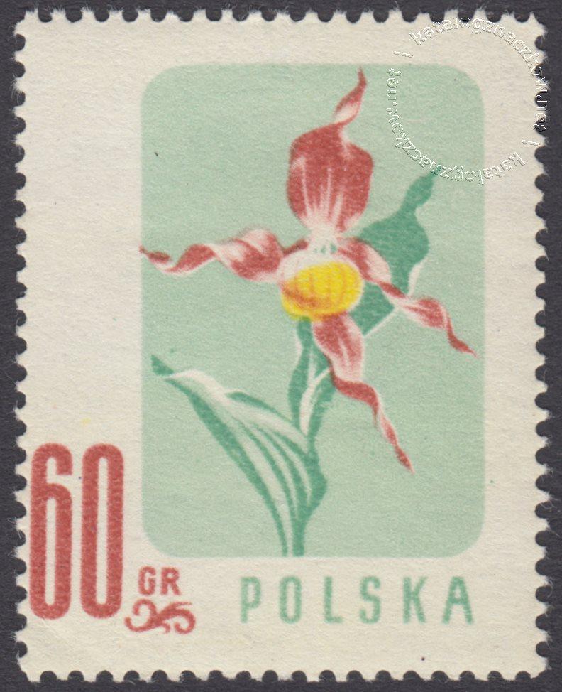 Kwiaty chronione znaczek nr 879