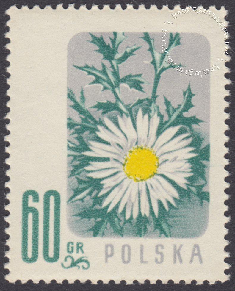 Kwiaty chronione znaczek nr 880