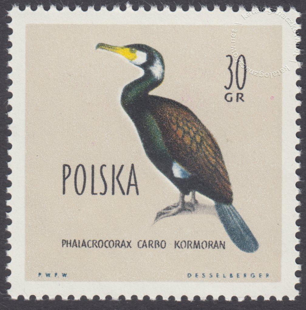 Ptaki chronione w Polsce znaczek nr 1064