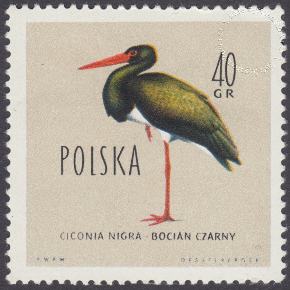 Ptaki chronione w Polsce znaczek nr 1065