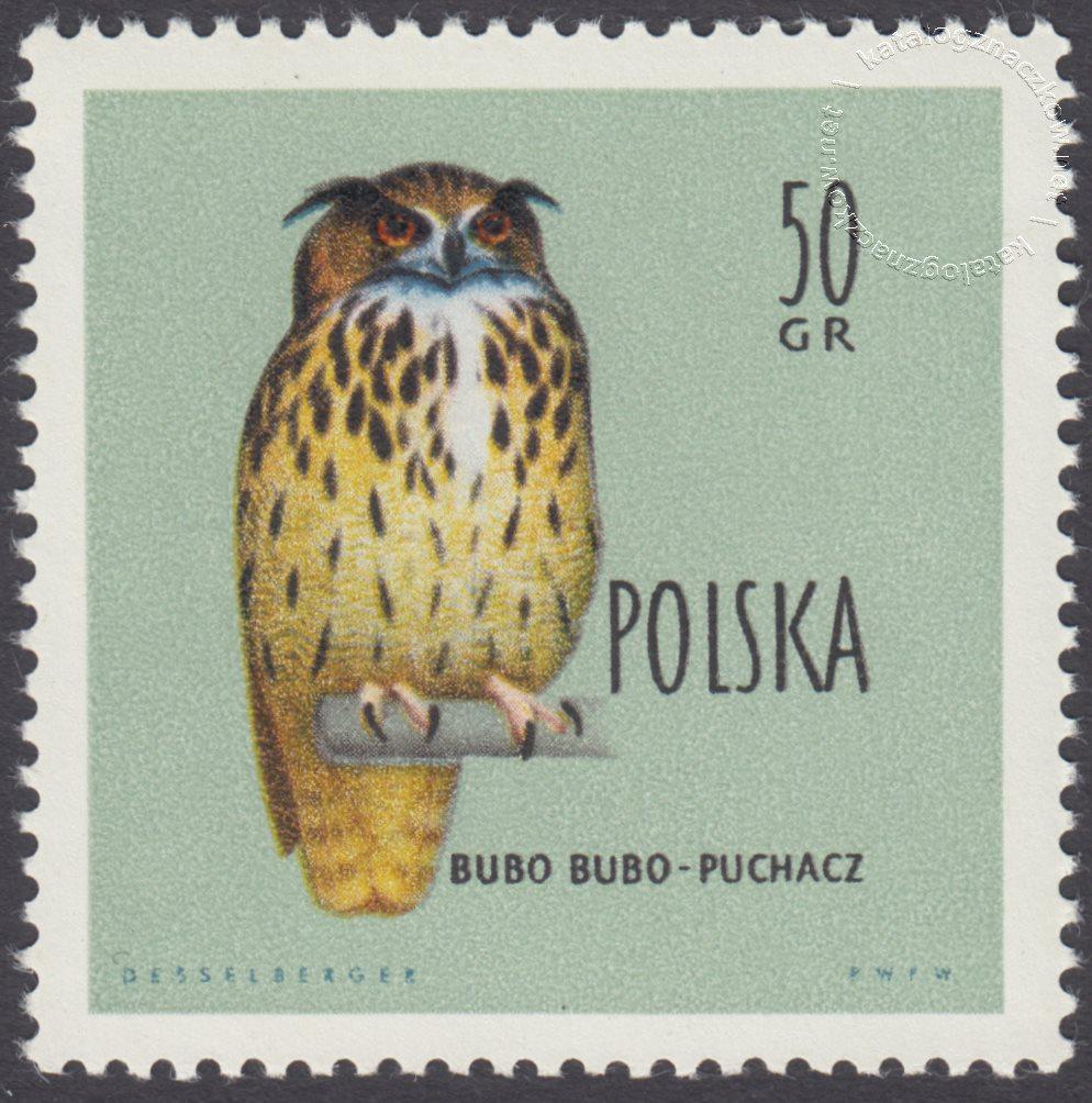 Ptaki chronione w Polsce znaczek nr 106