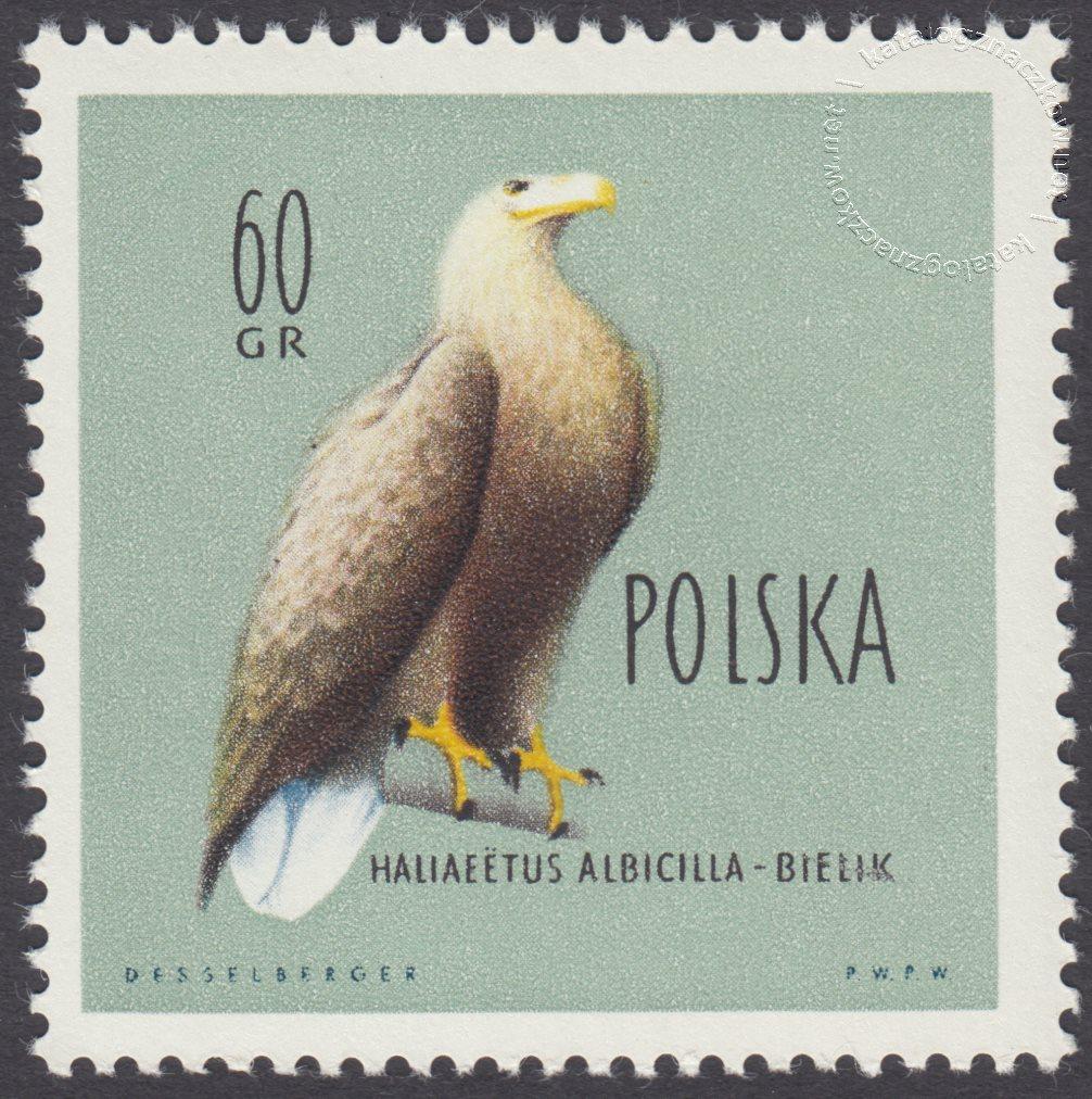 Ptaki chronione w Polsce znaczek nr 1067