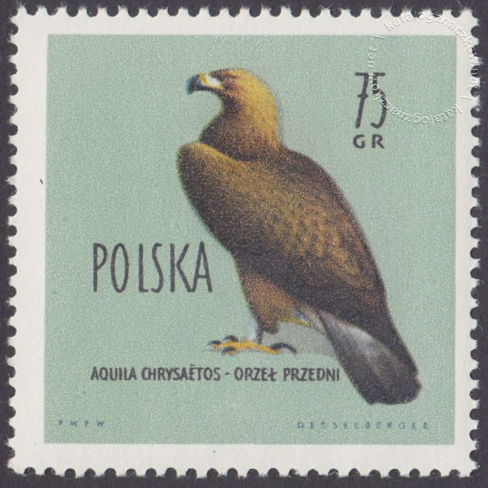 Ptaki chronione w Polsce znaczek nr 1068