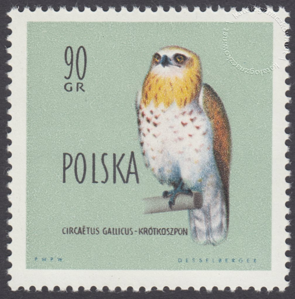 Ptaki chronione w Polsce znaczek nr 1069