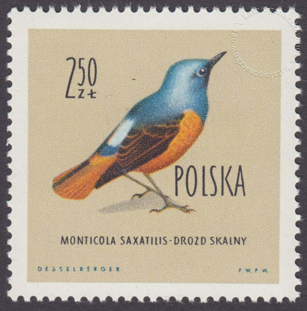 Ptaki chronione w Polsce znaczek nr 1070