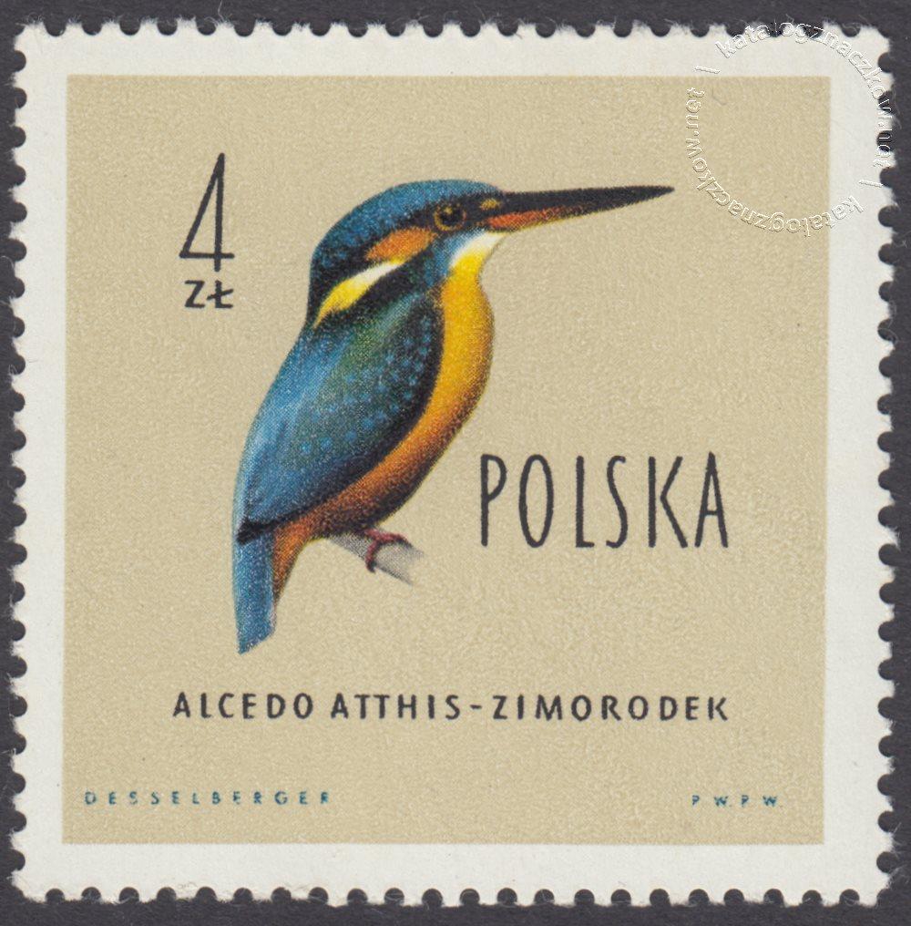 Ptaki chronione w Polsce znaczek nr 1071