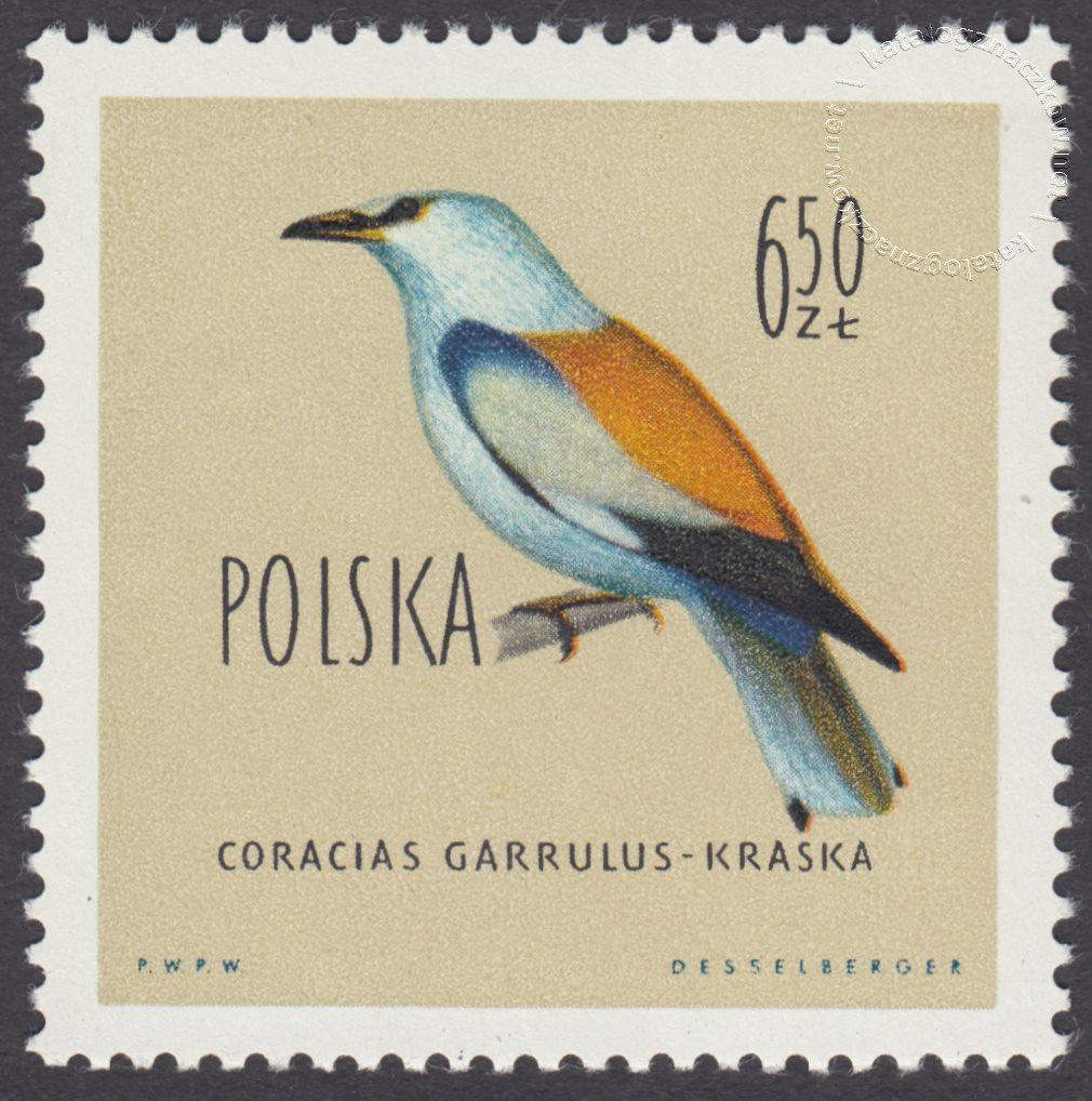 Ptaki chronione w Polsce znaczek nr 1073