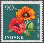 Kwiaty ogrodowe - 1397