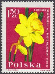 Kwiaty ogrodowe - 1399