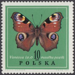 Motyle - 1650