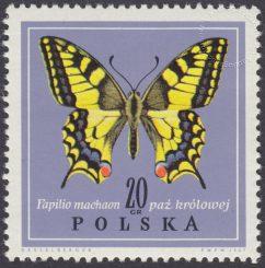 Motyle - 1651
