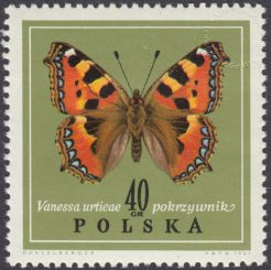 Motyle - 1652