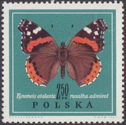 Motyle - 1655