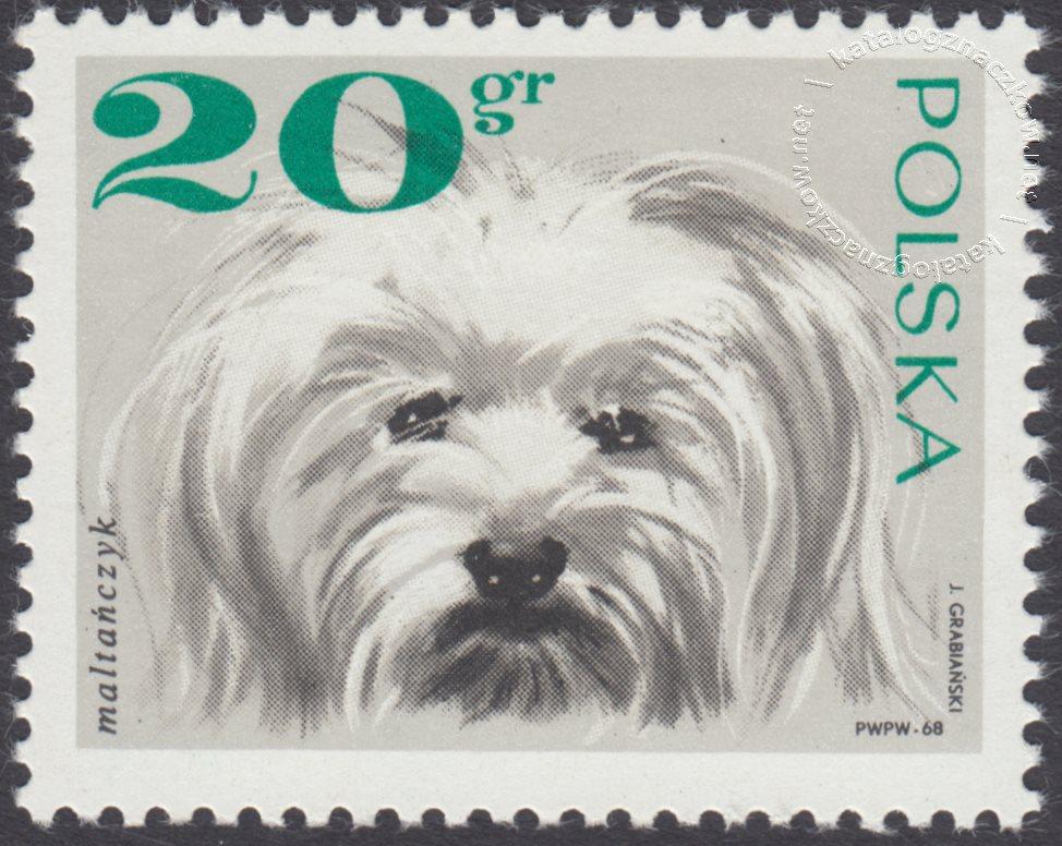 Rasy psów znaczek nr 1751