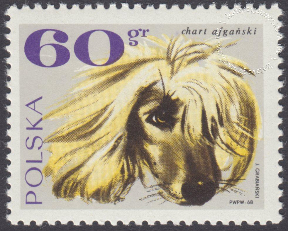 Rasy psów znaczek nr 1753