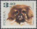 Rasy psów - 1756