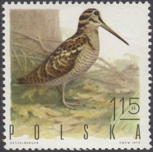 Ptaki łowne - 1843