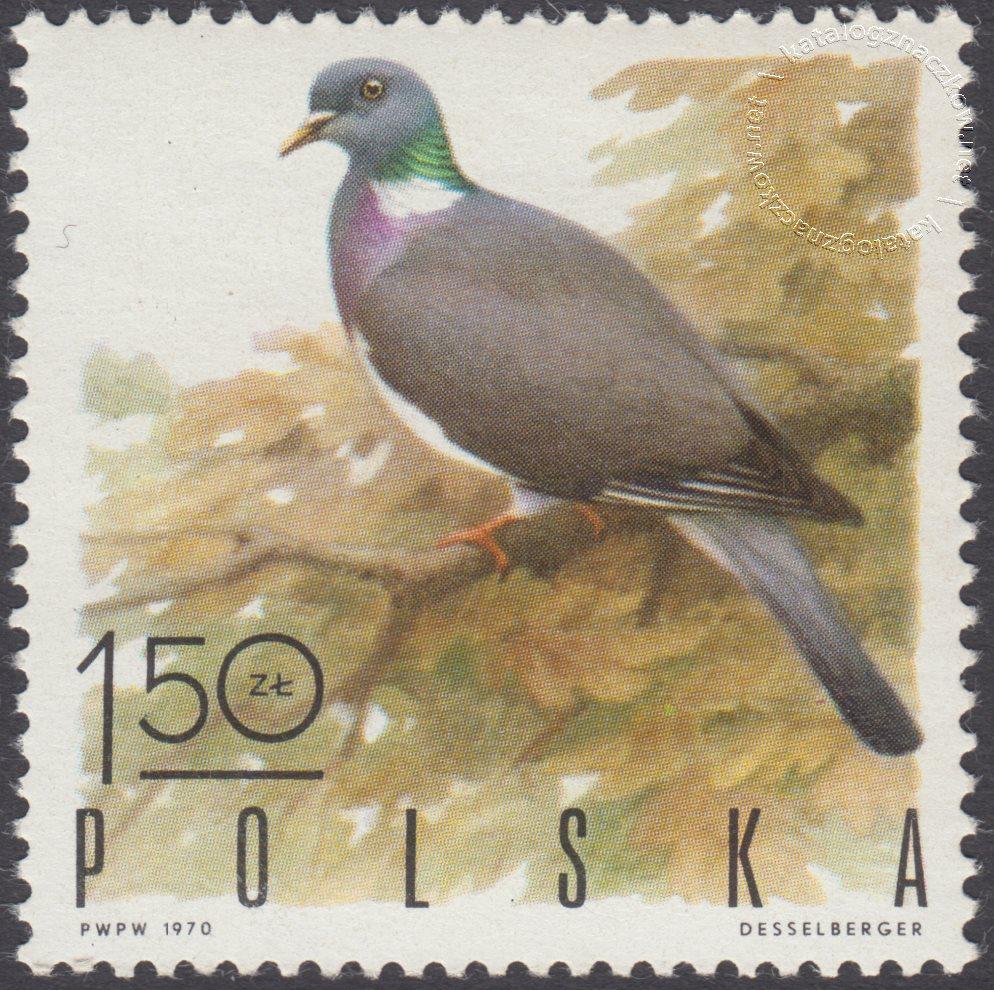 Ptaki łowne znaczek nr 1845