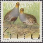 Ptaki łowne - 1847