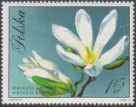 Kwiaty drzew - 1989