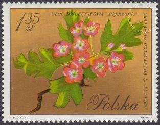 Kwiaty drzew - 1990
