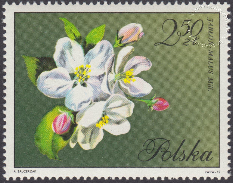 Kwiaty drzew znaczek nr 1991