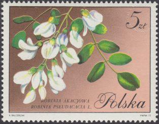 Kwiaty drzew - 1993