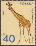 Zwierzęta ogrodów zoologicznych - 2016