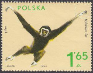 Zwierzęta ogrodów zoologicznych - 2019