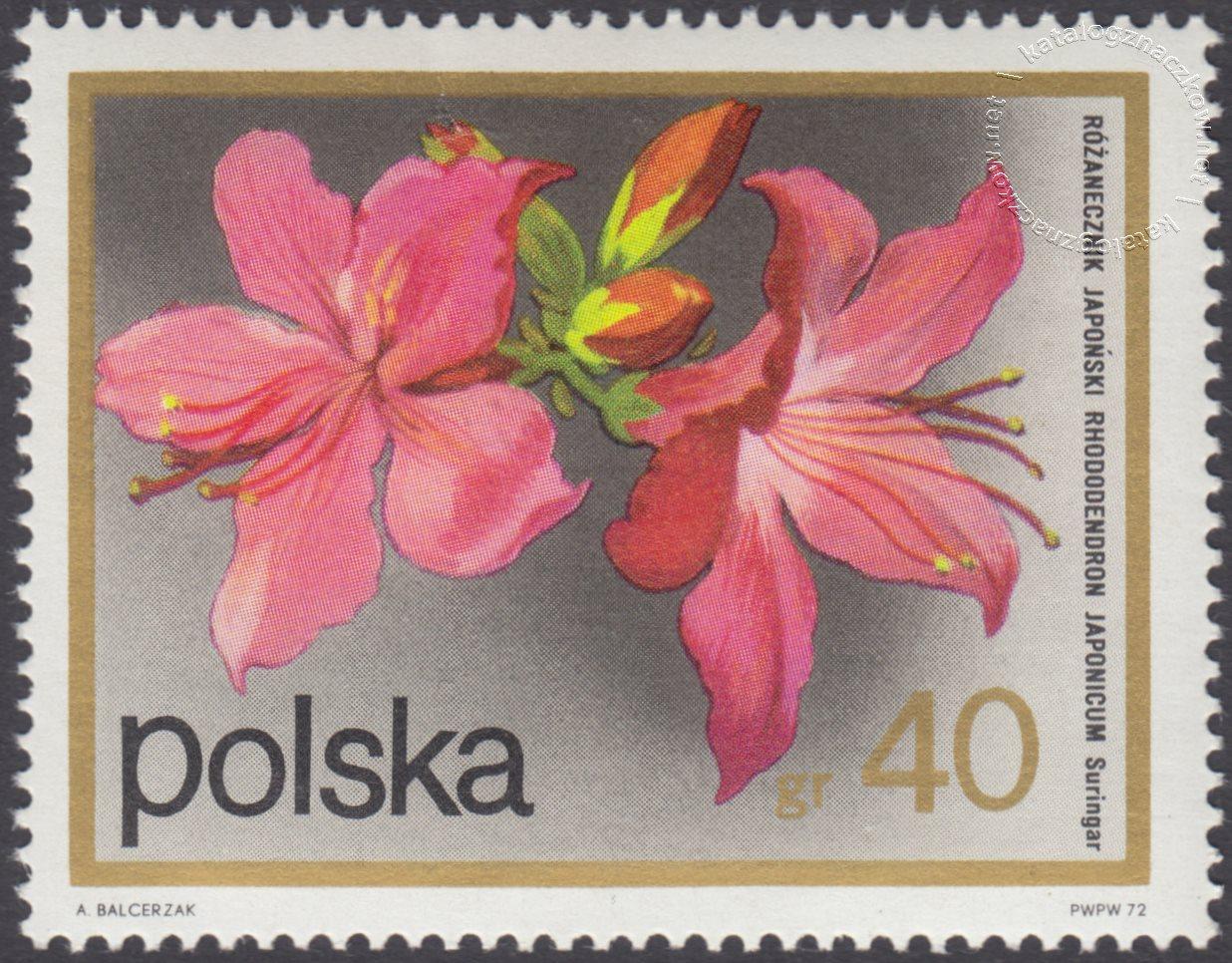 Kwiaty krzewów znaczek nr 2067