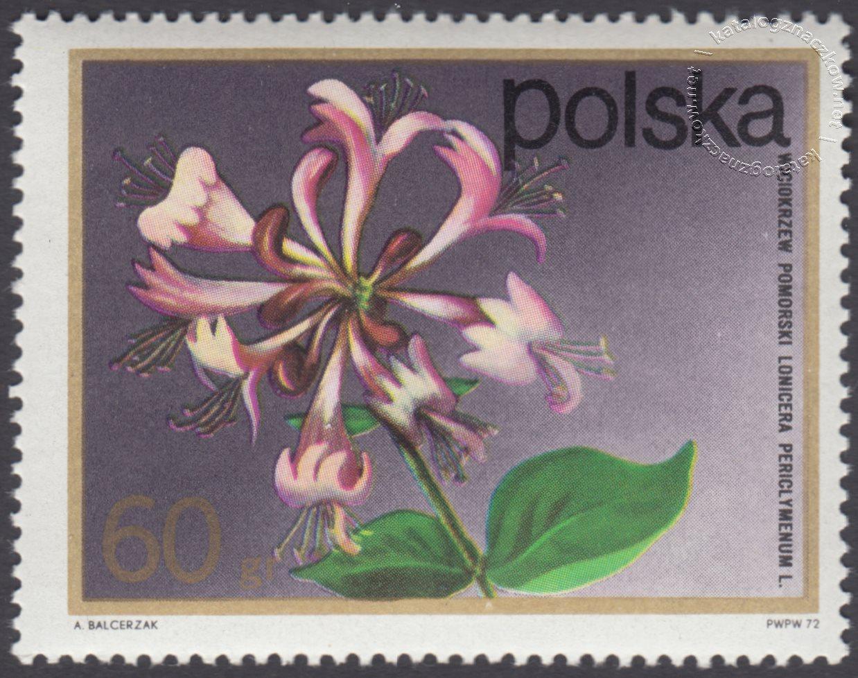 Kwiaty krzewów znaczek nr 2069