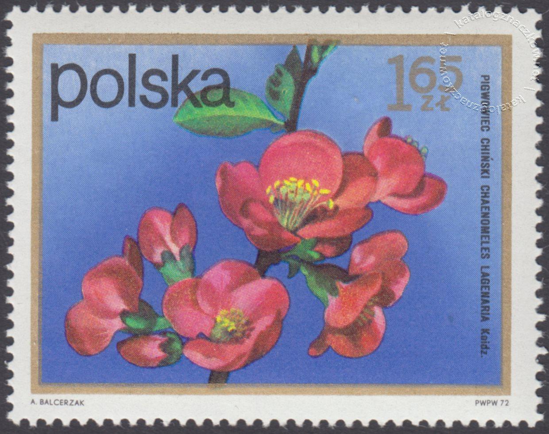 Kwiaty krzewów znaczek nr 2070