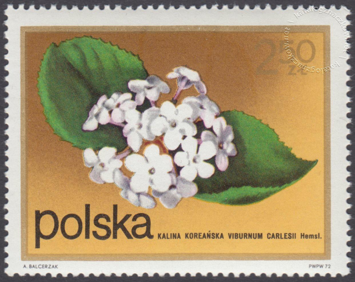 Kwiaty krzewów znaczek nr 2071