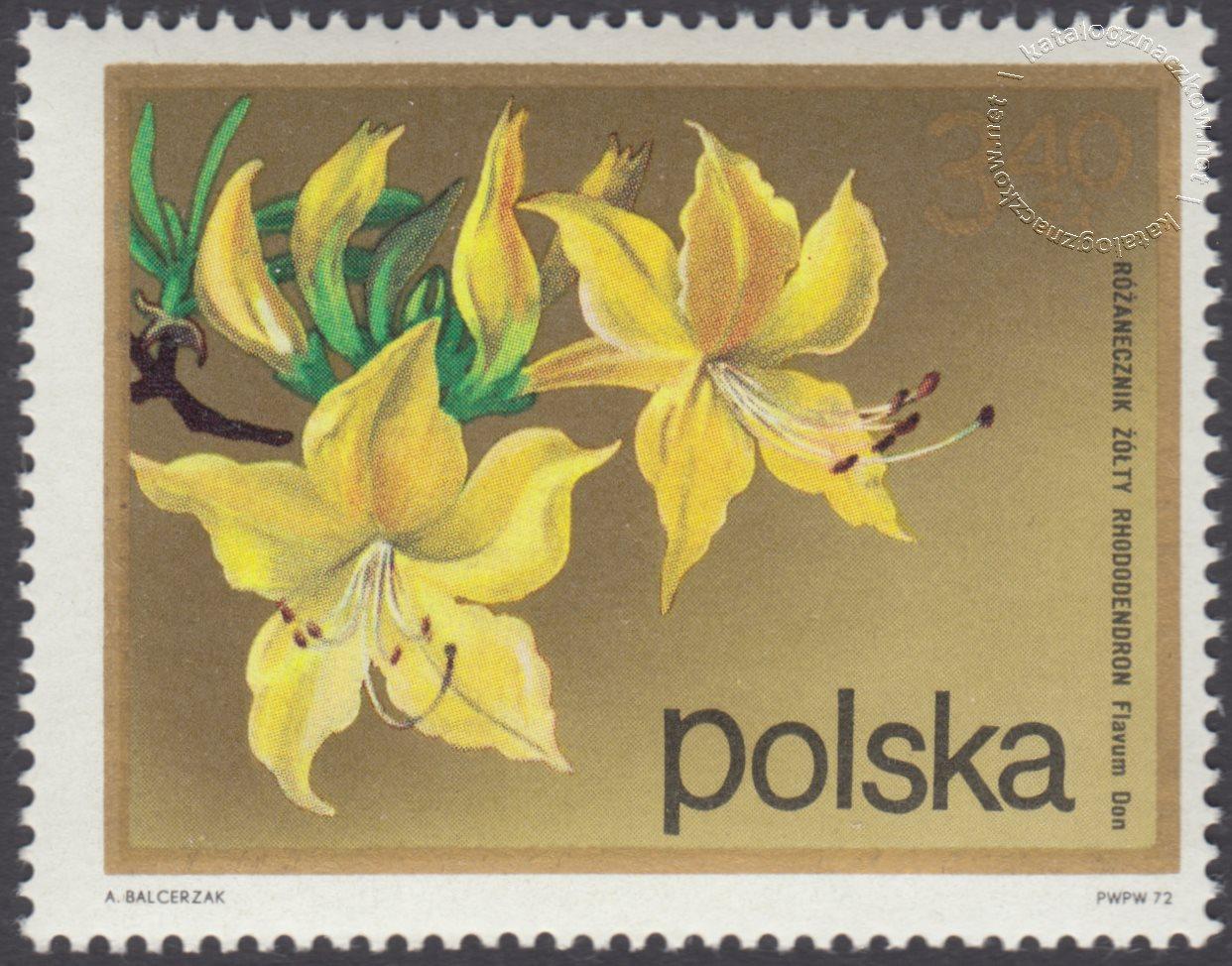 Kwiaty krzewów znaczek nr 2072