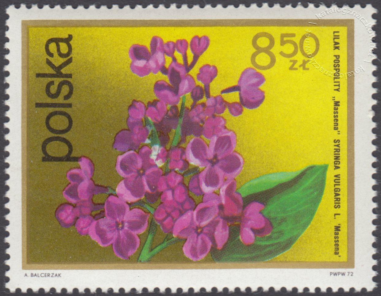 Kwiaty krzewów znaczek nr 2074
