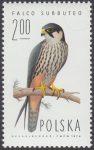 Sokoły - 2211