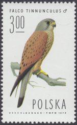 Sokoły - 2212