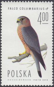 Sokoły - 2213