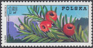 100 rocznica przewodnictwa w Polsce - 2226