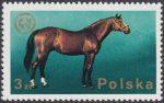 26 Zjazd Europejskiej Federacji Zootechnicznej w Warszawie - 2235