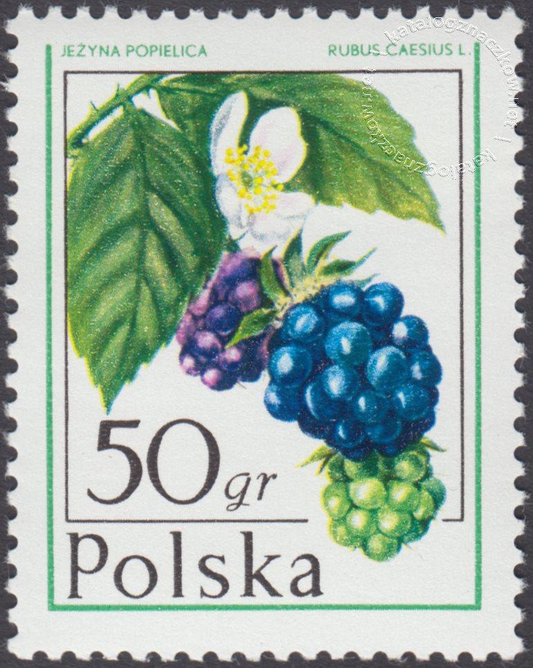 Owoce leśne znaczek nr 2340