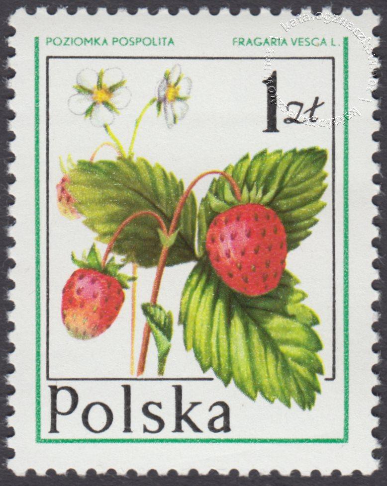 Owoce leśne znaczek nr 2342