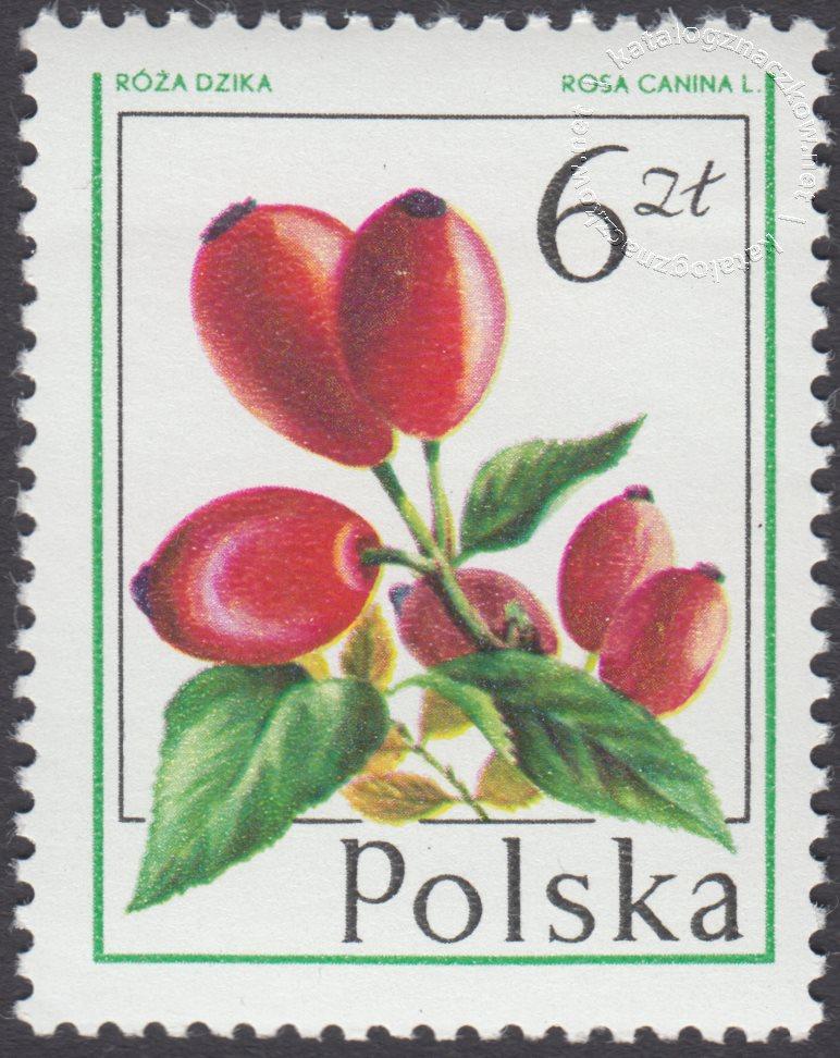 Owoce leśne znaczek nr 2346