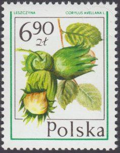 Owoce leśne - 2347